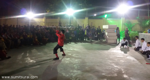 Martial Arts Skill Display